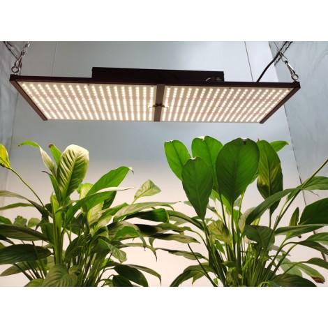HonLIGHT 240W Full Spectrum Plant Grow Light LED Hydroponic Growing Lights for 2x2FT Microgreens Succulents Houseplant, 1x1FT Stealth Seedling Veg Grow Lights